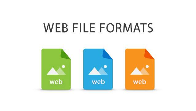 فرمت فایل های تحت وب